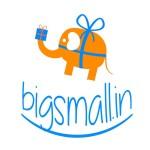 bigsmall